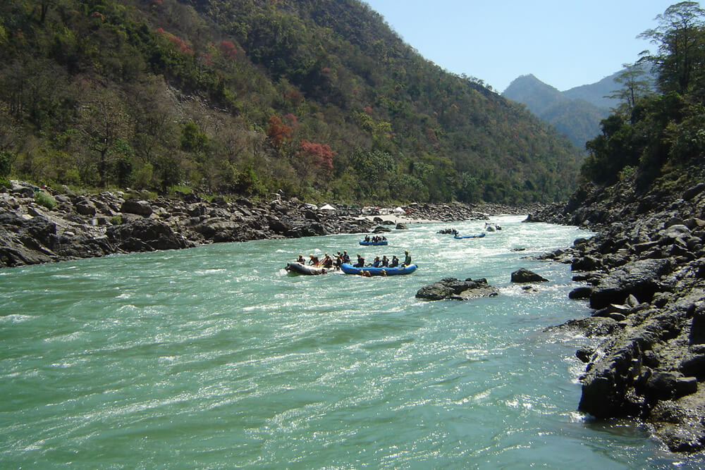 top things to do in haridwar